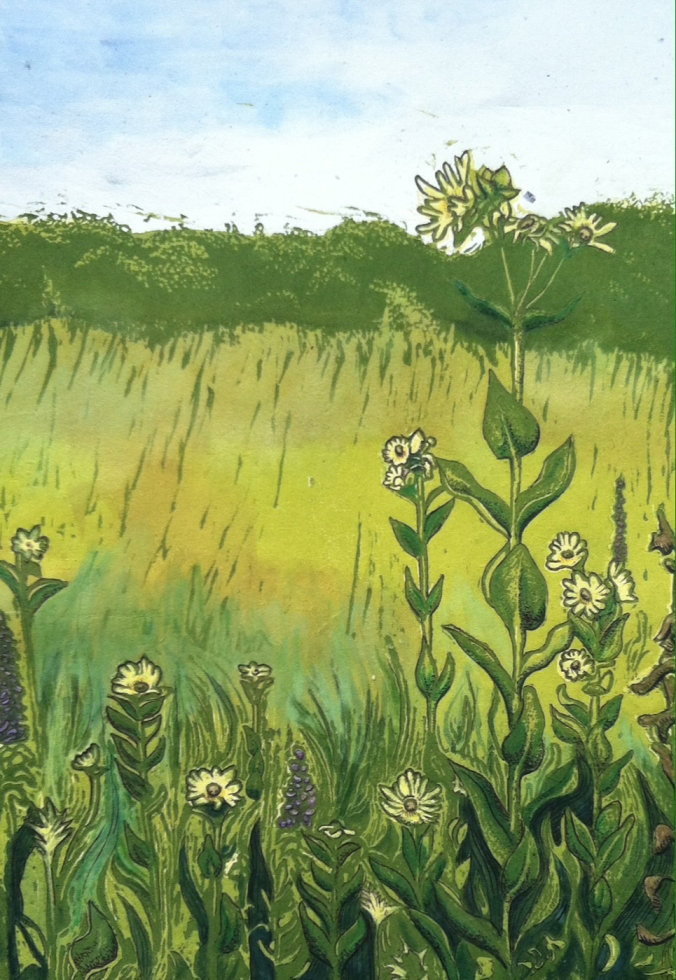 """Pawnee Prairie Park"" - Color Relief Print and Mixed Media - $100"