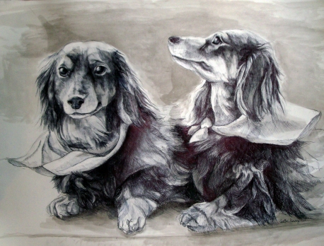 Tucker and Scarlet, pen and ink on paper- private collection